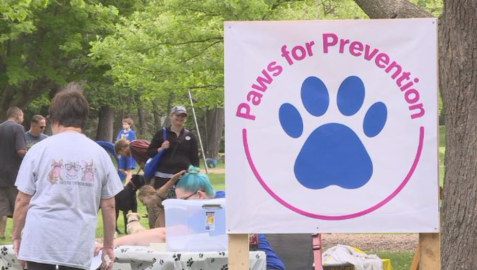 Breaking stigma around mental illness with Paws for Prevention – KSNB Local 4